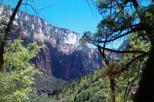 zion-national-park-by-tour-trekker-in-las-vegas-117965