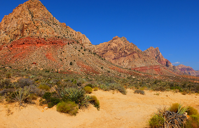Paardrijden in Red Rock Canyon in Las Vegas