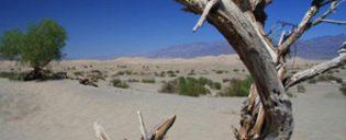 Dagtrip naar Death Valley vanuit Las Vegas